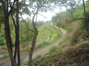 Jalan dengan jurang di kanan kiri